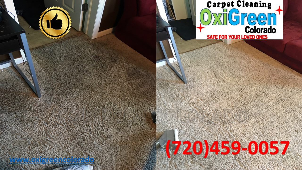 At OXIGREEN COLORADO, we are not a franchise Carpet Cleaning service. For years we have built our company from the ground up with hard work and providing ...